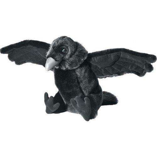 dessin de corbeau (petshop  dessin de corbe...