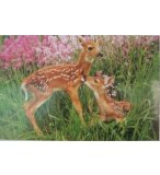 PUZZLE 2 FAONS 1000 PIECES - COLLECTION ANIMAUX - PARTY PUZZLE - 01050