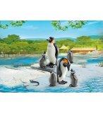 PLAYMOBIL ZOO 6649 FAMILLE DE PINGOUINS