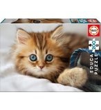 PUZZLE ANIMAUX : CHATON 200 PIECES - EDUCA - 17154