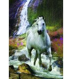 PUZZLE CHEVAL LIBERTE 500 PIECES - COLLECTION ANIMAUX - EDUCA - 15509