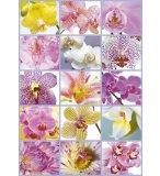 PUZZLE COLLAGE DE FLEURS 1500 PIECES - COLLECTION NATURE - EDUCA - 16302