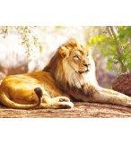 PUZZLE LE ROI DES ANIMAUX : LION COUCHE - 1500 PIECES COLLECTION VIE SAUVAGE - NATHAN - 87815