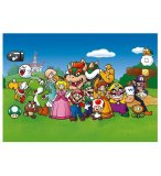 PUZZLE SUPER MARIO ET SES AMIS 500 PIECES - COLLECTION JEU VIDEO - WINNING MOVES - 29476