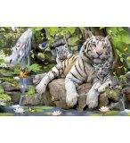 PUZZLE TIGRES BLANCS DU BENGALE 1000 PIECES - COLLECTION ANIMAUX - EDUCA - 14808
